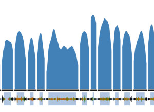 Alternation of exon/introns in the ExAC gene representation. The blue hills are the level of coverage of each gene fragment.