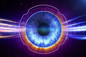 fleck retina