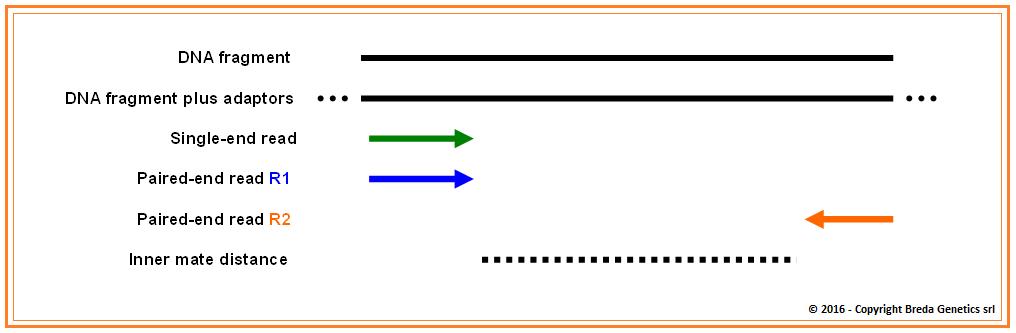 Bwa single end reads